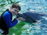 dolphin 017.jpg