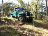Scrambler on Creek .JPG